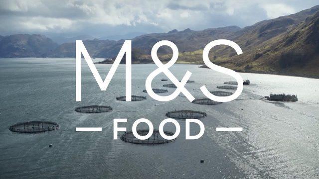 M&S Food Fresh Market Salmon - Advert Music