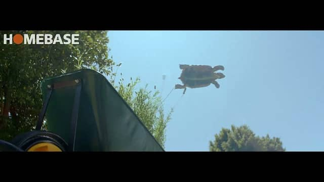 Homebase Gary the Tortoise - Advert Music